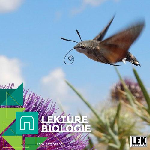 SPOEL festival 2018_Lekture Biologie